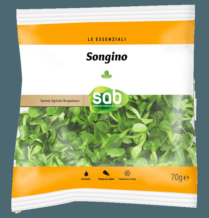 Songino
