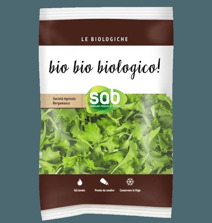 Baby green lettuce